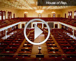 Texas House Of Representatives   The Texas House Has More Than 40  Committees And Sub Committees That Meet In Public Hearings.